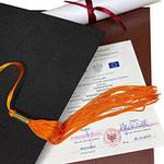 программа двойного диплома