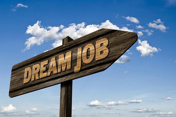 профессии в Польше, поступить в Польшу, высшее образование в Польше, учеба в Польше, обучение в Польше, образовательный центр AMBASADOR